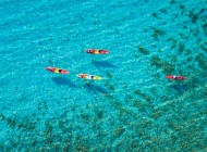 Sea-kayaking-with-Split-Trogir-excursions