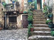 Trogir center and garden
