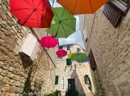 Milna-Brac-Umbrella